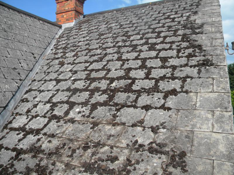 Asbestos Cement Roof Slates For Crafts